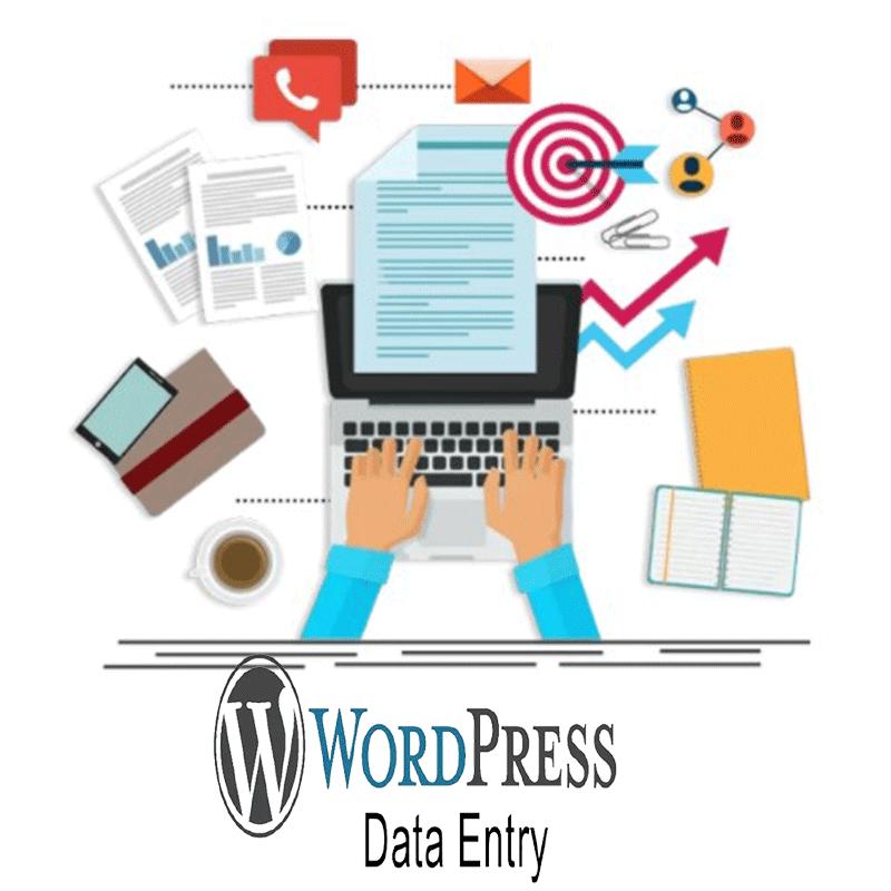 Data entry για WordPress - website - eshop